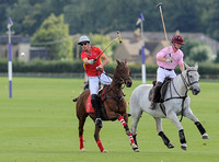 polo action between Foxcote and CPPC