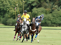 Cheltenham Cup polo action between Maiz Dulce and Beaufort Blackhound
